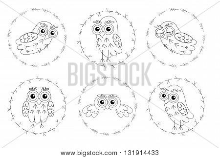 Set owl vector birds isolated on white background. vector illustration owl