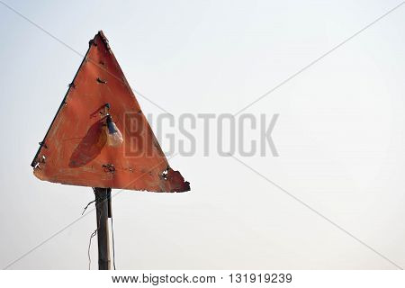 Abandoned rusty road traffic sign with lightbulb.