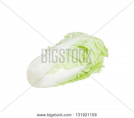 Cabbage isolated on white background. fresh chinese cabbage on a white background.