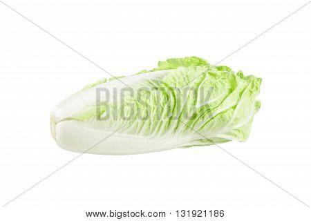 fresh cabbage isolated on white background. fresh chinese cabbage on a white background.