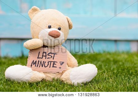 Teddy Bear Holding Cardboard With Information Last Minute