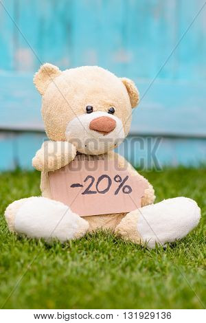 Teddy Bear Holding Cardboard With Information -20%