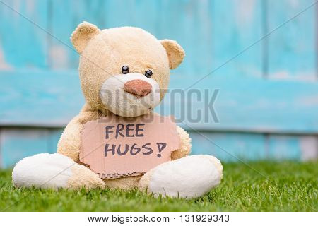 Teddy Bear Holding Cardboard With Information Free Hugs !