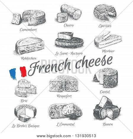 Vector illustrated Set #4 of French Cheese Menu. Illustrative sorts of cheese from France.