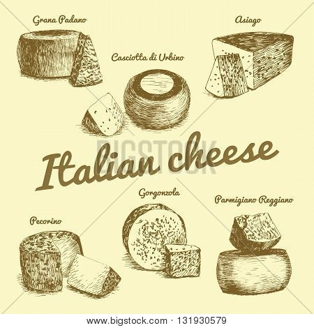 Vector illustrated Set #3 of Italian Cheese Menu. Illustrative sorts of cheese from Italy