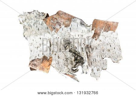 Birch a  bark isolated on white background