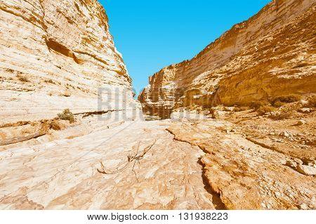 Canyon En Avedat of the Negev Desert in Israel