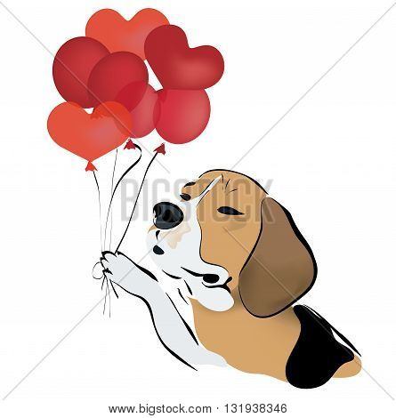 Beagle Dog with Red Heart Shaped Balloons