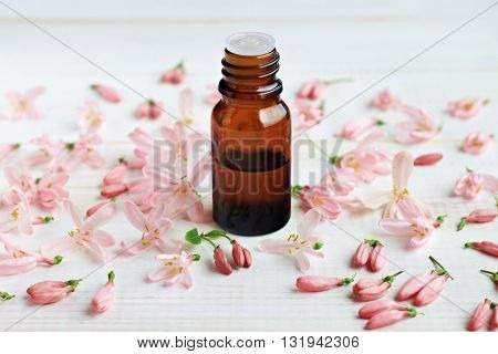 Floral essential oil, aroma oil, light pink delicate flowers scattered.