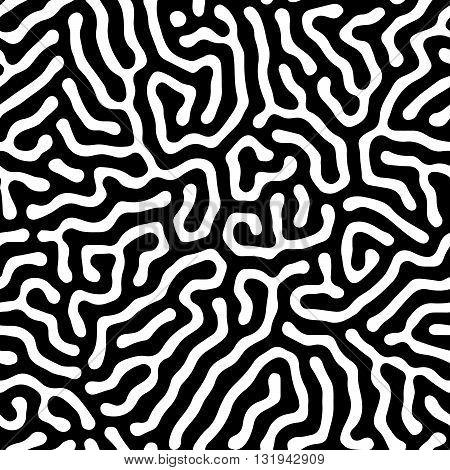 black and white maze pattern. coral maze.