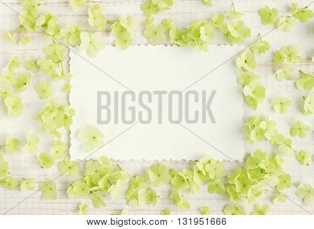 paper card and delicate blossom. light flowers surrounded, empty card background.