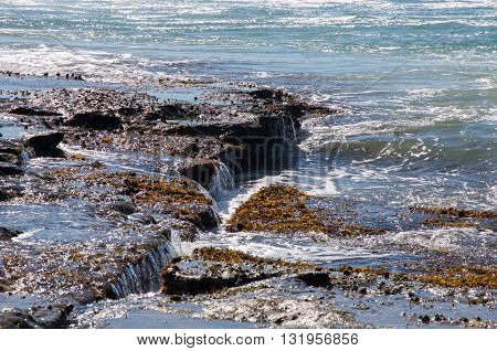 Rocky beach reef in the Indian Ocean with vegetation and cascading water at Jake's Point in Kalbarri, Western Australia.