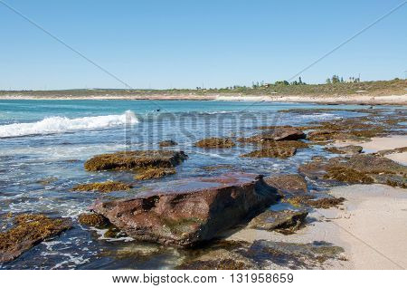 KALBARRI,WA,AUSTRALIA-APRIL 20,2016: Person paddling their surfboard in the turquoise Indian Ocean waters at Jake's Point with a rocky beachfront in Kalbarri, Western Australia.