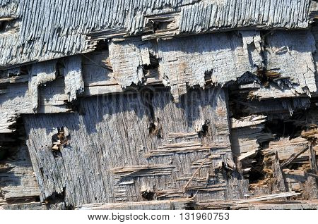 A grungy aged wooden background with small shots from a hunter gun.