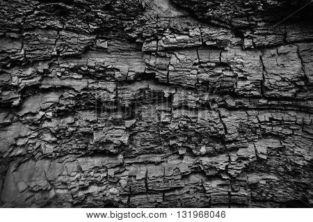 Abstract burn wood background, black cracked surface
