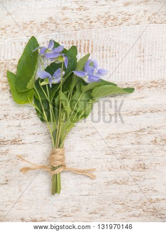 Blue viola flowers bouquet tied with jute rope on the rustic white painted background
