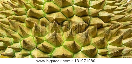 Thorns of durian  texture background, tropical fruit