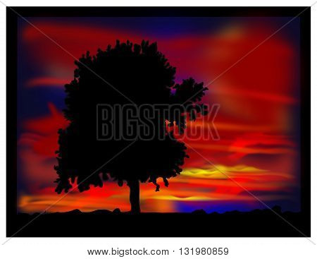Tree in the evening - vector image.