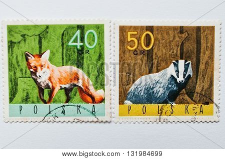 Uzhgorod, Ukraine - Circa May, 2016: Collection Of Postage Stamps Printed In Poland Shows Fox And Ba