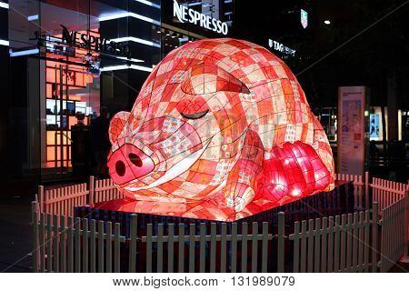 Chinese New Year Zodiac - The Pig