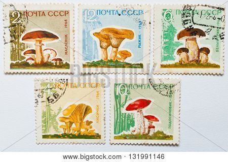 Uzhgorod, Ukraine - Circa May, 2016: Collection Of Postage Stamps Printed In Ussr, Shows Mushrooms S