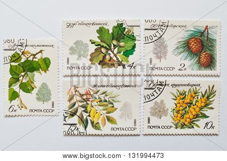 Uzhgorod, Ukraine - Circa May, 2016: Collection Of Postage Stamps Printed In Ussr, Shows Branches Of