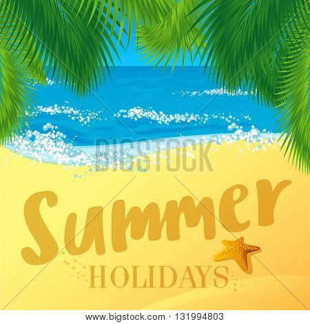 Palm leaves  tropical beach vector background. Summer holiday vector concept