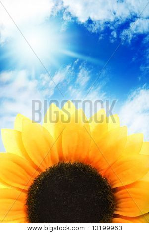 Sunflower over blue sky