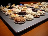 Variety Of Gourmet Cupcakes In Elegant Bakery