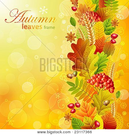 Autumn background with colorful leaves. Vector illustration.