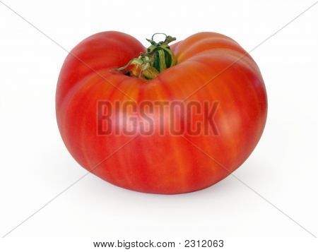 Tomate Beefsteak listrado: 'Northern Lights'