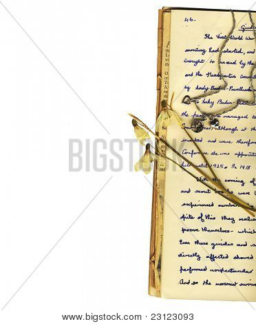 letters, pages of a diary and flowers framed on one edge with a white background