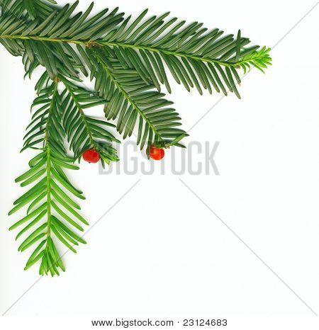 Christmas traditional decoration in the corner