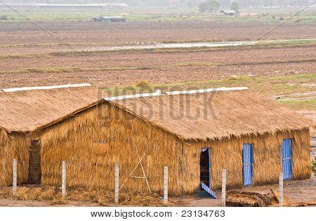 Grass Barns