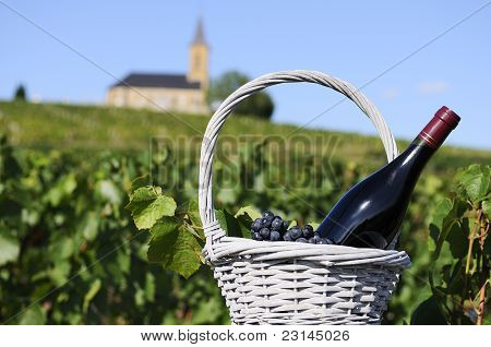 Bottle Of Red Wine In Countryside