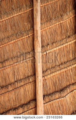 hut palapa from tropical Mexico wood cabin roof detail