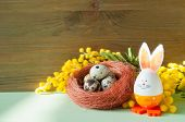 Easter Background. Easter Bunny And Eggs In The Nest Near The Mimosa Flowers. Easter Background. Eas poster