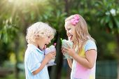 Kids Eating Ice Cream. Child With Fruit Dessert. poster