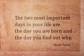 The Two Most Important Days In Your Life Are - Famous American Writer Mark Twain Quote Printed On Vi poster