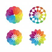 Colorful Flower Vector Concept Design - Bright Colored Flower Colour Palette Symbol. Design Art And  poster