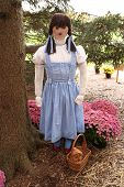 image of oz  - lifesize image of dorotohy from the wizard of oz - JPG