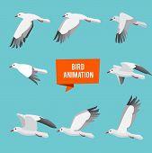 Key Frames Of Animation Flying Bird. Animation Bird Fly, Animal Wildlife Fly Loop Beak, Vector Illus poster