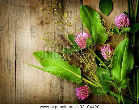 Herbs over Wood. Treatment Plant. Herbal Medicine. Herbal Background.