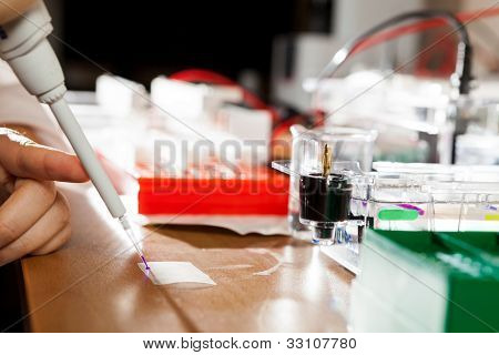 Sample preparation for DNA electrophoresis
