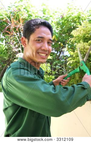Gardener At Work Cutting And Smiling