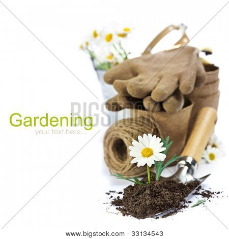 Garden tools and flower isolated on white background