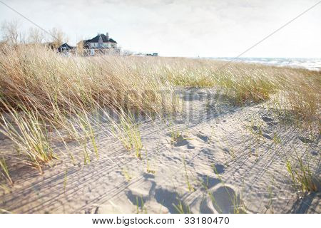 Dune grass with beach house in background on Lake Michigan