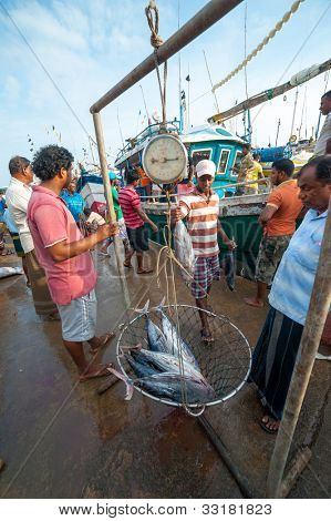 MIRISSA, SRI LANKA - APRIL 10: Fishermen returned to their work in Mirissa, Sri Lanka on April 10, 2012. In 2008 USAID finalize a $12.7 million repair of fishing harbor affected by tsunami in Mirissa.