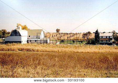 Fazenda Amish
