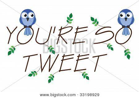 Tweet así